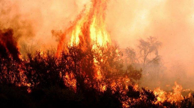 Hay nuevos focos de incendios en La Pampa y Río Negro