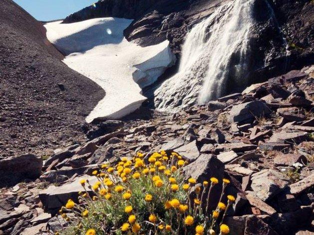 La naturaleza a pleno en el verano de Esquel
