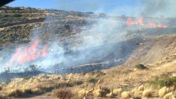 manantial rosales: combaten el segundo incendio en el dia