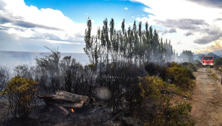 Un nuevo incendio forestal en el Roque González demandó dos horas de combate