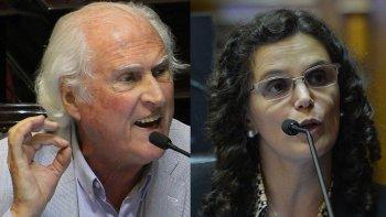 Fernando Pino Solanas y María Fiore Viñuales son los autores de los dos proyectos sobre el régimen penal juvenil que tiene en estudio el Senado.