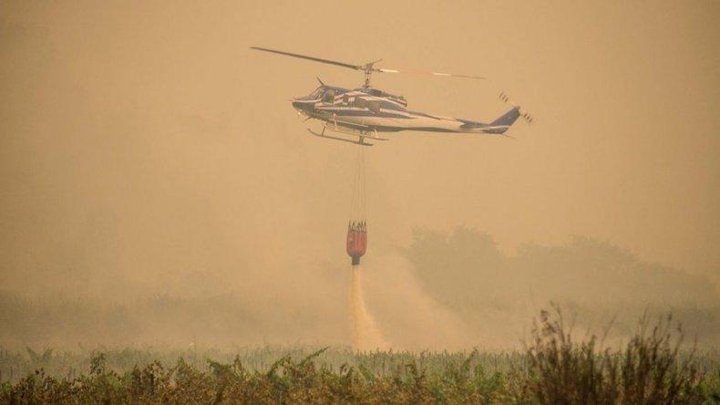 Combaten 39 incendios forestales en Chile