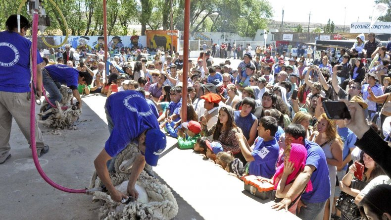 El tradicional concurso de esquila fue eje de las actividades del fin de semana en Río Mayo.