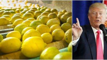 trump suspendio la importacion de limones argentinos