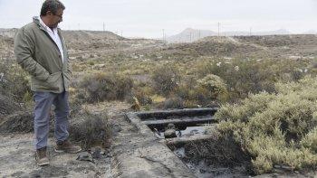 El subsecretario Murcia recorrió la zona afectada por la afluencia de petróleo, donde un animal quedó atrapado el fin de semana.