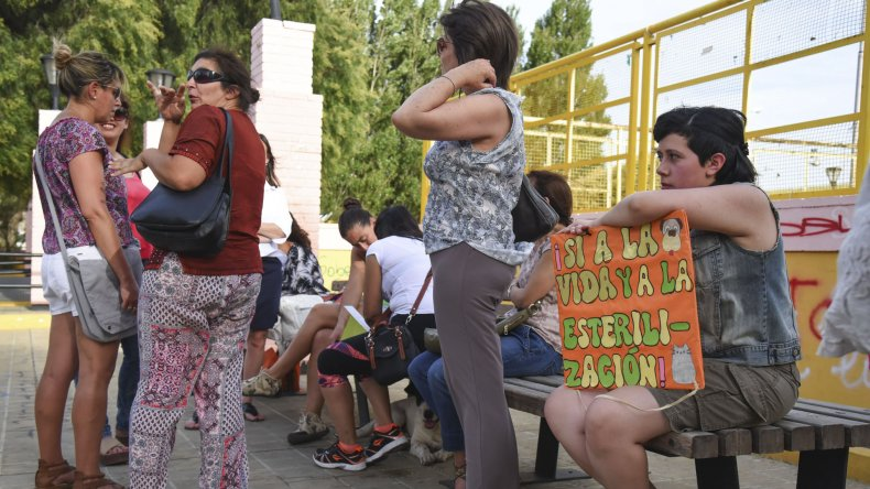 La concentración en la plaza de la Escuela 83.