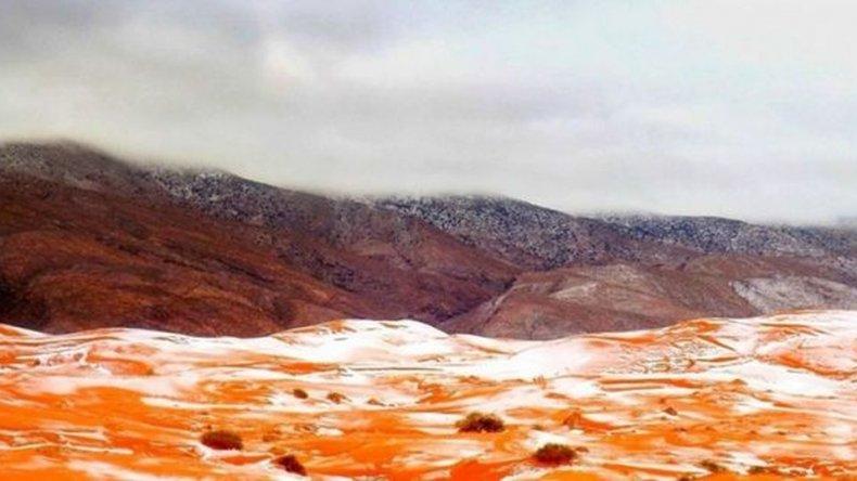 Solo se pudo ver tres veces nieve en 37 años en el desierto del Sahara.