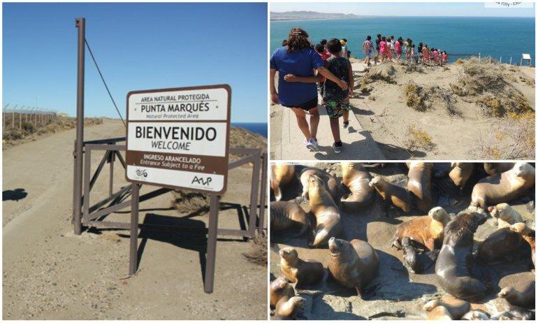 Punta Marqués festeja su cumpleaños con entrada gratuita