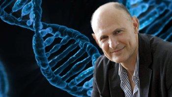 Integran células humanas en  embriones de cerdo para crear órganos