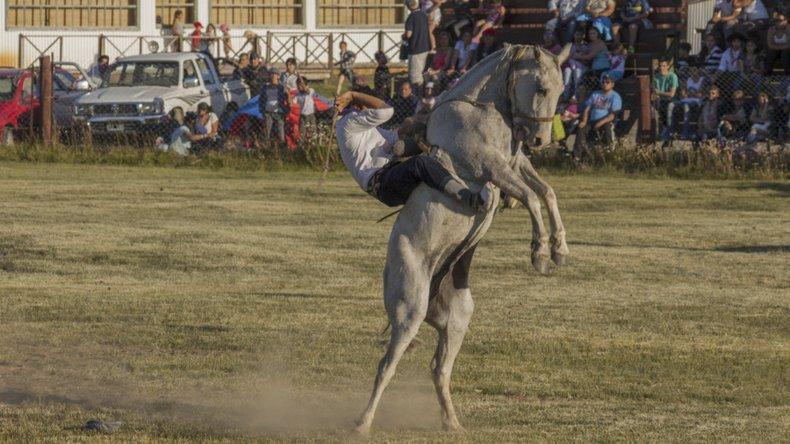 Más de 120 montas en las categorías Grupa Surera y Bastos con Encimera competirán en el Festival de Doma 140° Aniversario del Bautismo del lago Argentino.