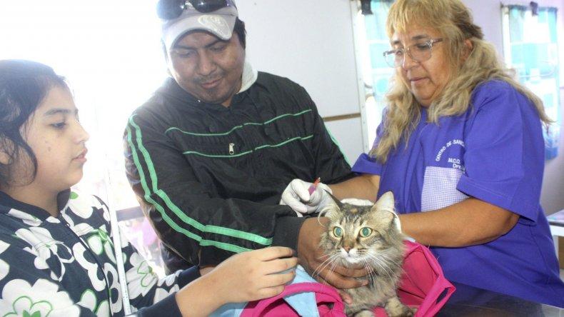 El Gorosito fue escenario del inicio de la campaña que promociona el cuidado responsable de las mascotas en Caleta Olivia.
