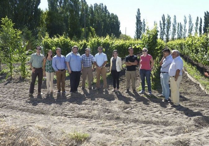 En Chubut hay aproximadamente 100 hectáreas de cultivos. El mayor porcentaje está al sur de la provincia