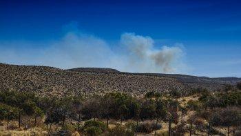 un campo al sur de rada tilly sufrio dos incendios en menos de cuatro dias