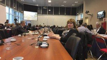 la diputada llanos pidio compromiso  de nacion para con la patagonia