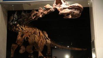colocaran la replica del dinosaurio mas grande del mundo en el acceso a trelew