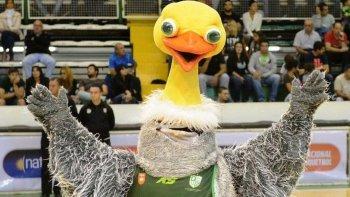 charito fue elegida la mascota de la liga nacional de basquet