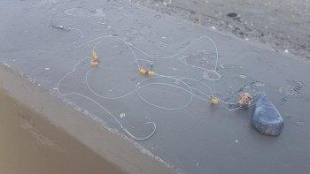 pescadores en la mira: denuncian que dejan anzuelos tirados en la playa