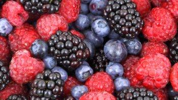 Producción busca nuevos mercados para la Fruta Fina