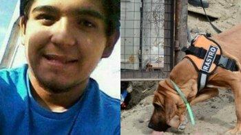 perros adiestrados buscan al joven desaparecido en caleta olivia
