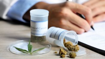 una clinica de cannabis medicinal funcionara en mendoza