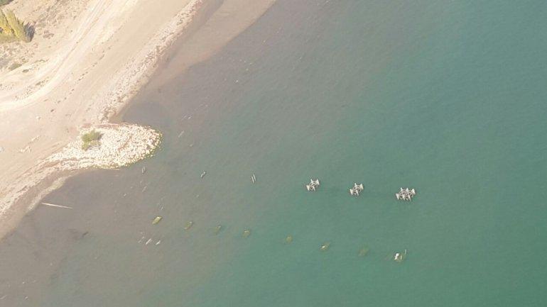Desde el INTA señalan que es urgente la situación de los lagos