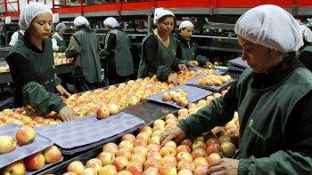 El ingreso de importaciones frutícolas desde países como Chile y el cierre de mercados para los productos argentinos es uno de los factores atribuidos a la crisis que vive el sector en el Alto Valle de Río Negro y Neuquén.