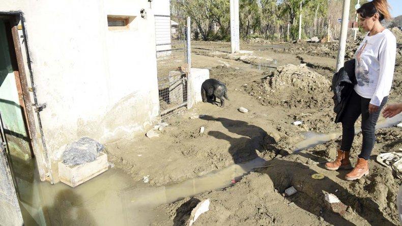 Numerosas familias del Abel Amaya conviven desde el temporal con aguas servidas en sus casas y reclaman ayuda de las autoridades.
