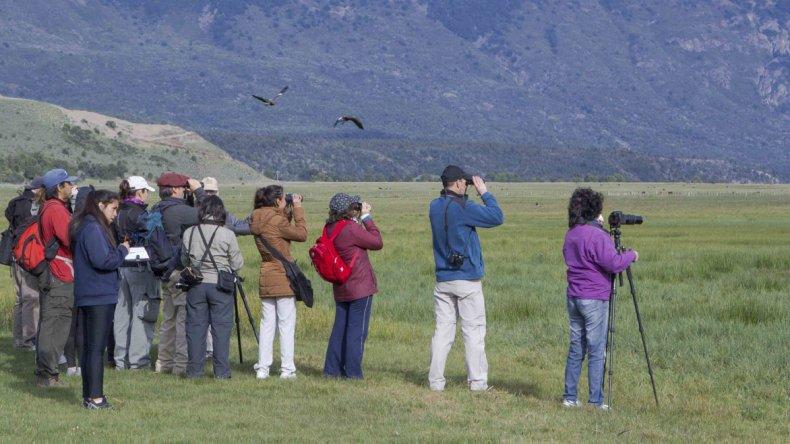 El avistamiento de aves es una actividad amigable con el medio ambiente que suma cada vez más adeptos.