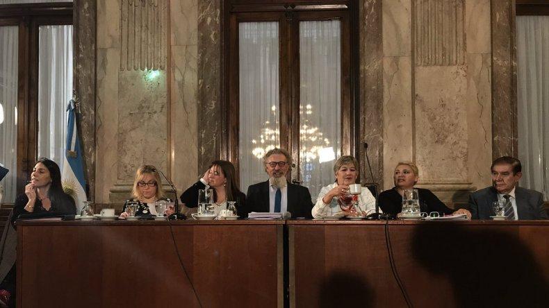 Senadores patagónicos en contra del DNU que atenta contra el Federalismo