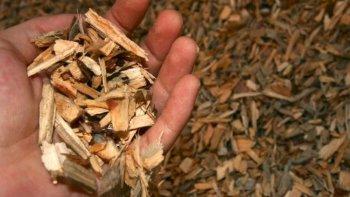 chubut impulsa el uso de biomasa para producir energia termica