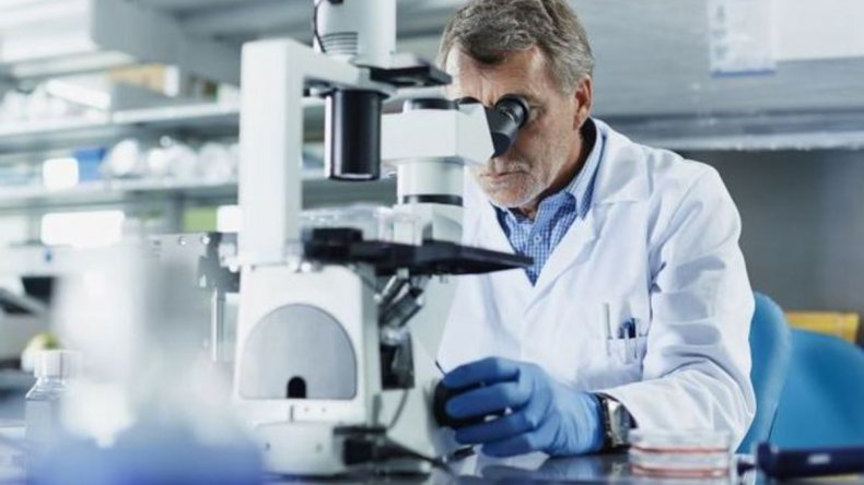 Chubut propuso evaluación especial para investigadores