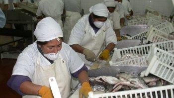 Sin la restitución de los reembolsos, se avizora un panorama crítico para la industria pesquera de la región.