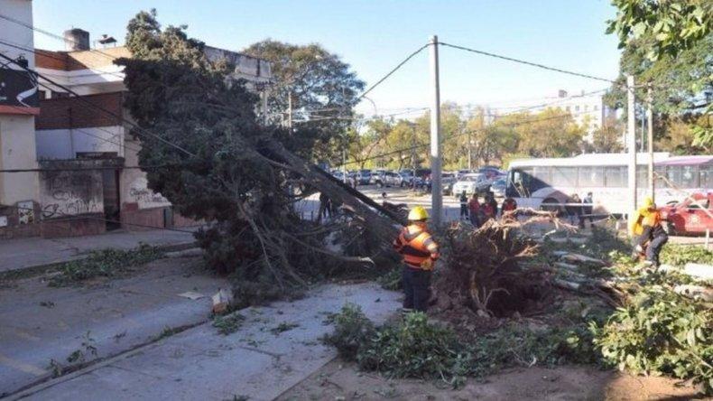 Tres muertos por un temporal de viento y nieve en Jujuy