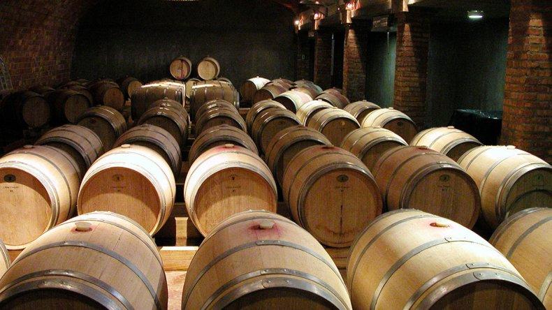 Patagonia cuenta con cientos de establecimientos inmersos en condiciones climáticas ideales para la elaboración de vinos base para espumantes.