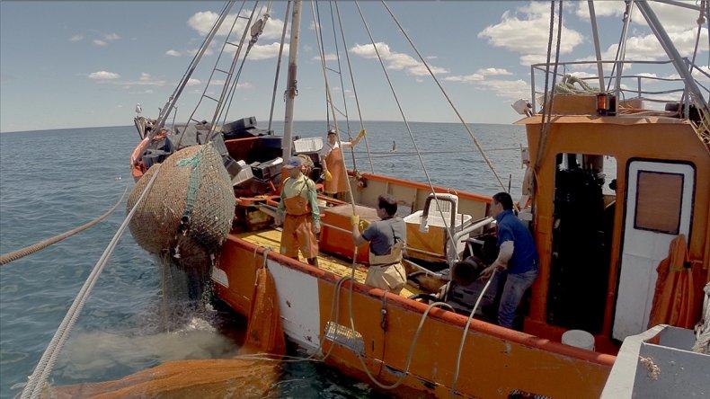 El documentalista Gastón Klingenfeld debuta en el largometraje con Legado del mar.