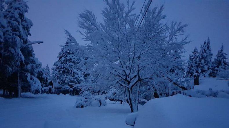 Clases suspendidas y cortes de luz por intensas nevadas