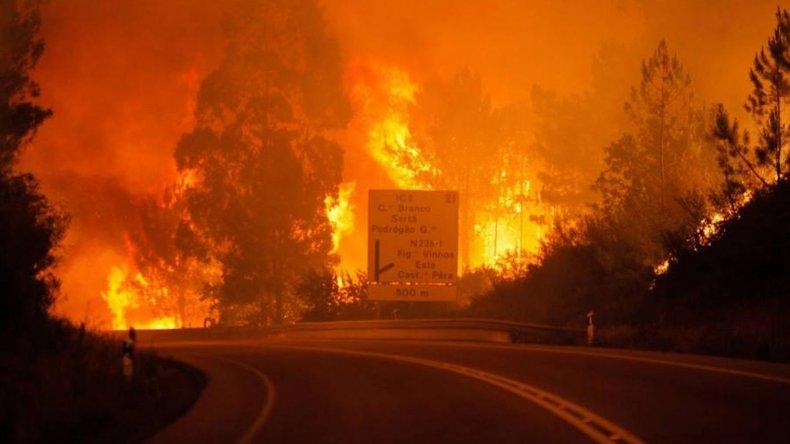 Dos mil bomberos combaten un incendio en Portugal