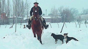 peon recorrio 30 kilometros a caballo por alimentos para sus animales