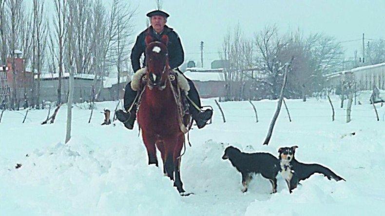 Peón recorrió 30 kilómetros a caballo por alimentos para sus animales