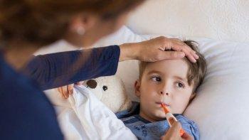¿que hay que saber sobre la gripe a?