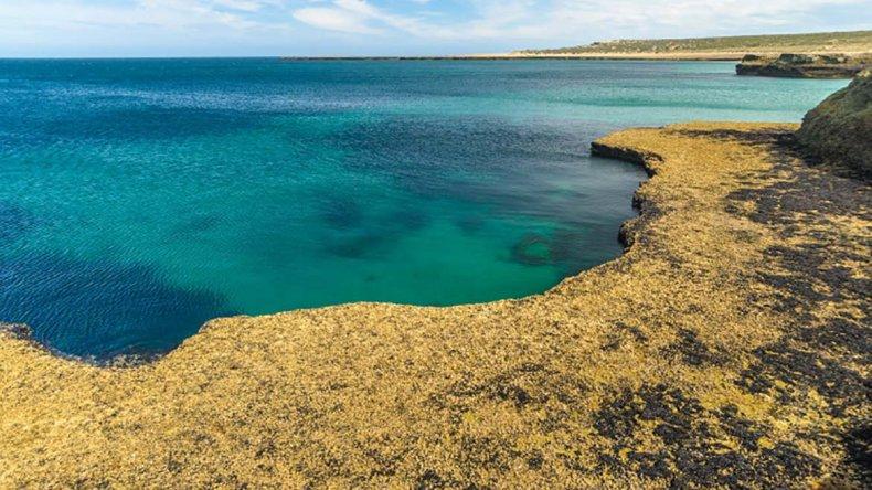 En el Golfo San Matías se instalará la planta nuclear que impulsa el Gobierno nacional.
