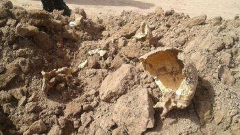 hallan restos humanos y sospechan que podrian ser de desaparecidos