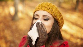 rinitis alergica: como se la reconoce y cual es el tratamiento