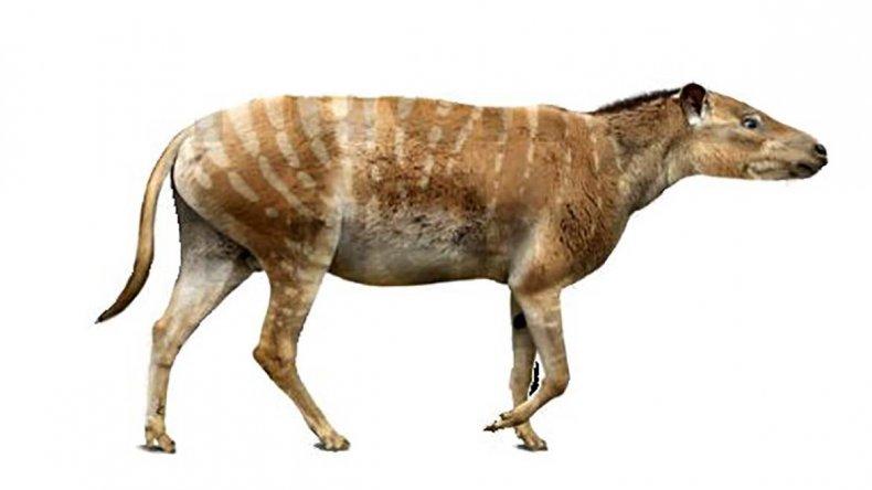 El Notiolofos regueroi tenía el tamaño semejante a una oveja.