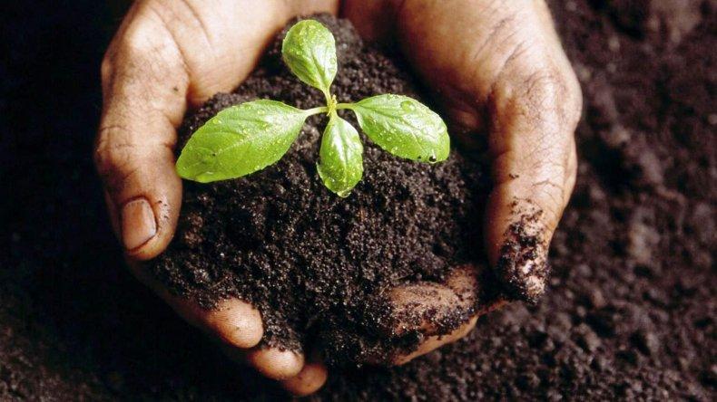 Piden una escuela agropecuaria para la zona norte de Comodoro