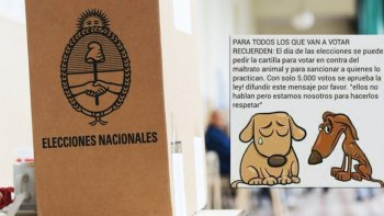 un viral contra el maltrato animal busca impugnar el voto