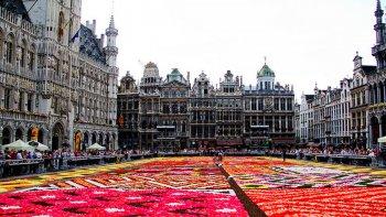 hasta el martes belgica celebra el verano con mas de 100.000 flores