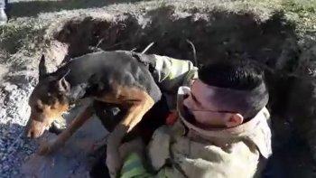 bombero rescato a un perro que cayo a un pozo
