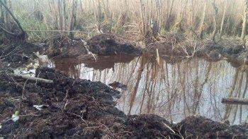 La zona de pantanos donde el sábado fue encontrada la aeronave.
