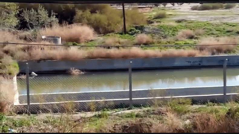 Una pileta de agua estancada preocupa a los vecinos de Mosconi